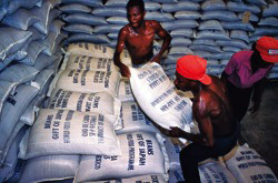 As food prices skyrocket, more people around the world are going hungry. The United Nations provided some food supplies to countries in need. Photo: United Nations