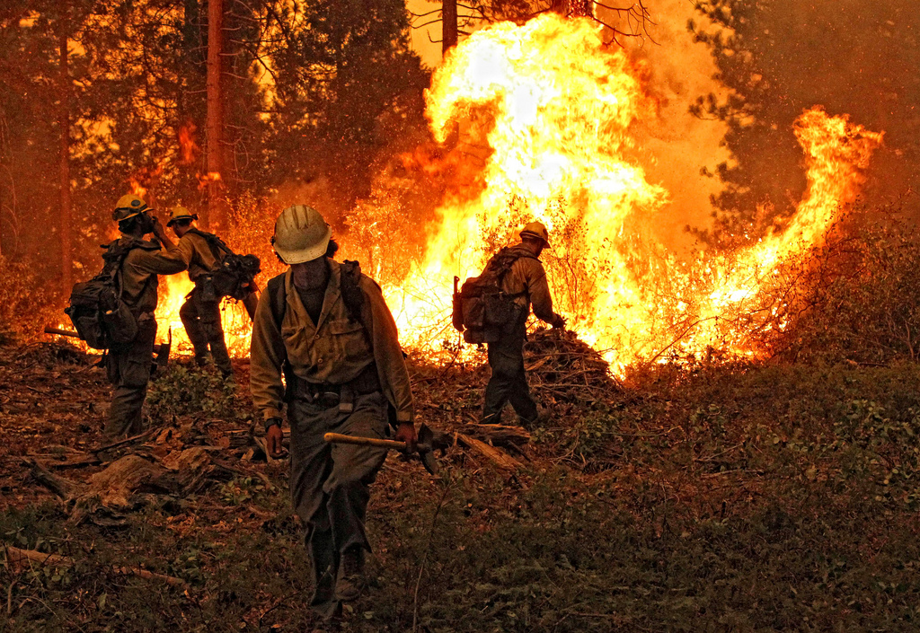 The Yosemite Rim Fire started on August 17, because of a hunter's fire that escaped, destroying 400 square miles of land and more than 100 homes. PHOTO: Mike McMillan - USFS