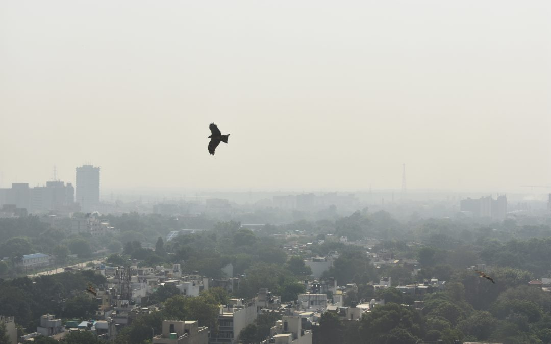 Air Pollution Is a Growing Problem — And It's Reaching Alarming Levels in India